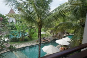 Take in the Culture and Serenity of Alaya Resort - Ubud