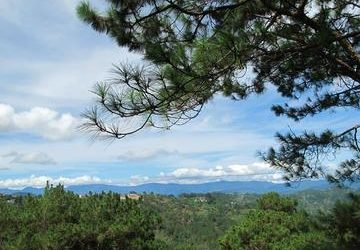 5 Things To See And Do In Baguio – Philippines