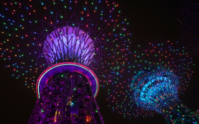 Enjoy the Night Sky at Singapore's Gardens by the Bay