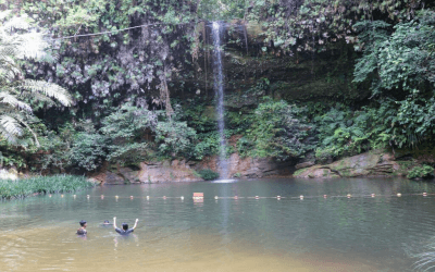 A Picturesque Hike in the Lambir Hills National Park in Miri – Sarawak